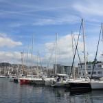 Vigo, Delfiner och Cascais (1)
