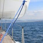 Vigo, Delfiner och Cascais