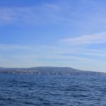 Vigo, Delfiner och Cascais (22)