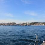 Vigo, Delfiner och Cascais (27)