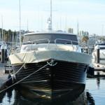 Vigo, Delfiner och Cascais (30)