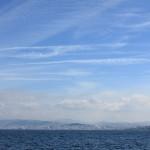 Vigo, Delfiner och Cascais (40)