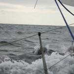 Vigo, Delfiner och Cascais (9)