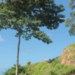 Tobago (110)