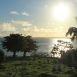 Tobago (14)