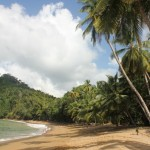 Tobago (80)